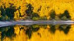 Autumn Golden Hour
