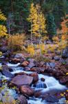 Healing Rivers Of Fall