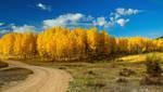 Fall Rural Roads