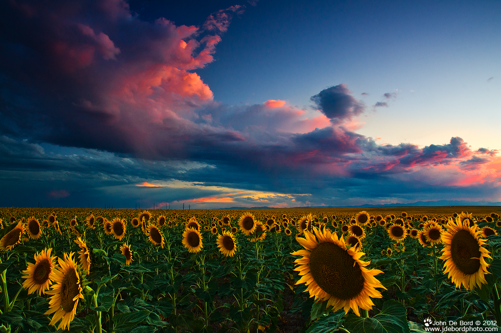 Skies Of A Summer Sunset by kkart on DeviantArt
