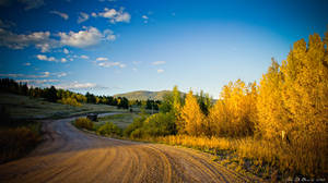 Gold Of The Backroads