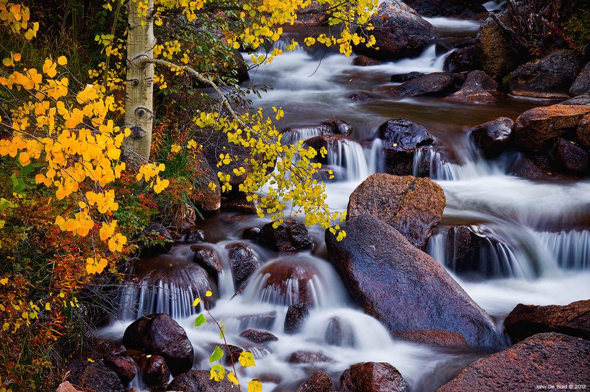 Autumn Zen by kkart