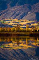 A Fall Stillness
