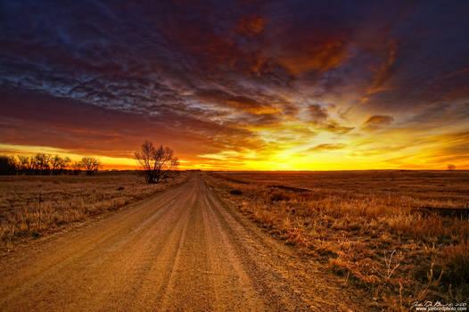 Into The Sunrise