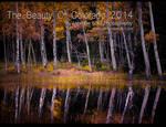The Beauty Of Colorado 2014 Calendar