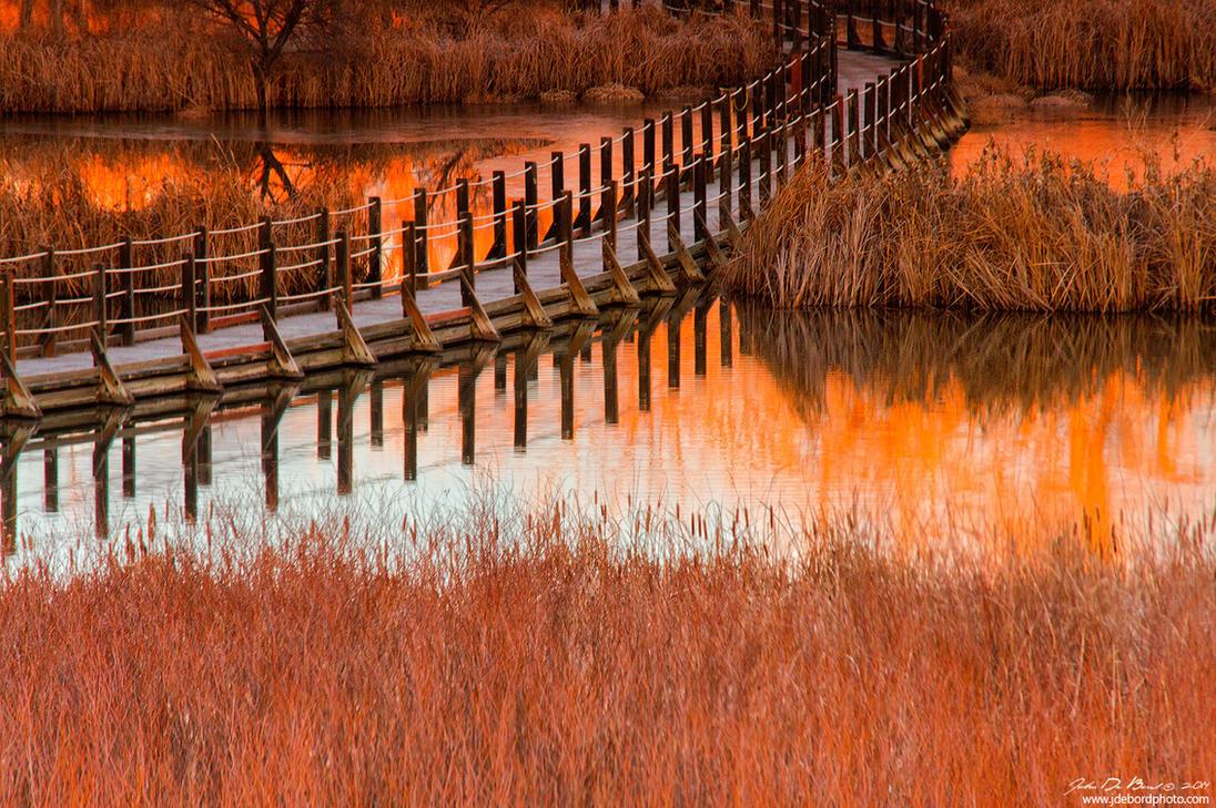 Wetlands Dawn by kkart