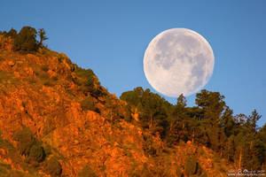 Honey Moonset Over Red Rocks