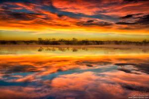 When The Sky Dances by kkart