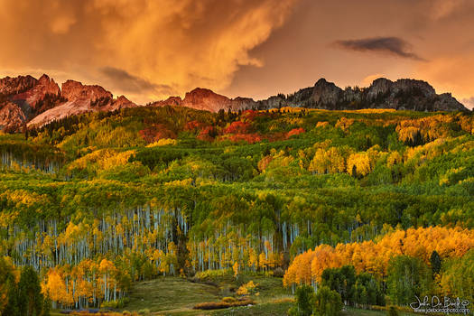 A Colorado Autumn Along Kebler