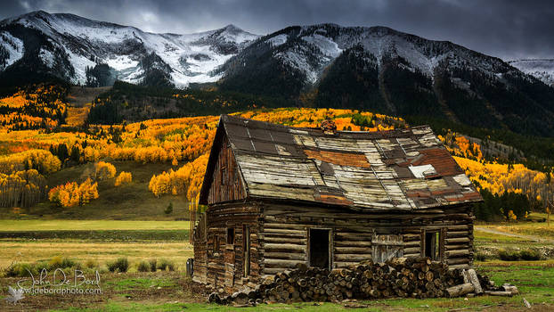 The Cabin In Crested Butte