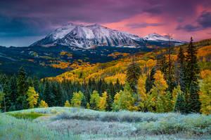 When Fall Comes To Colorado