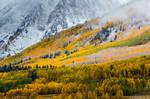 A Fall Hillside