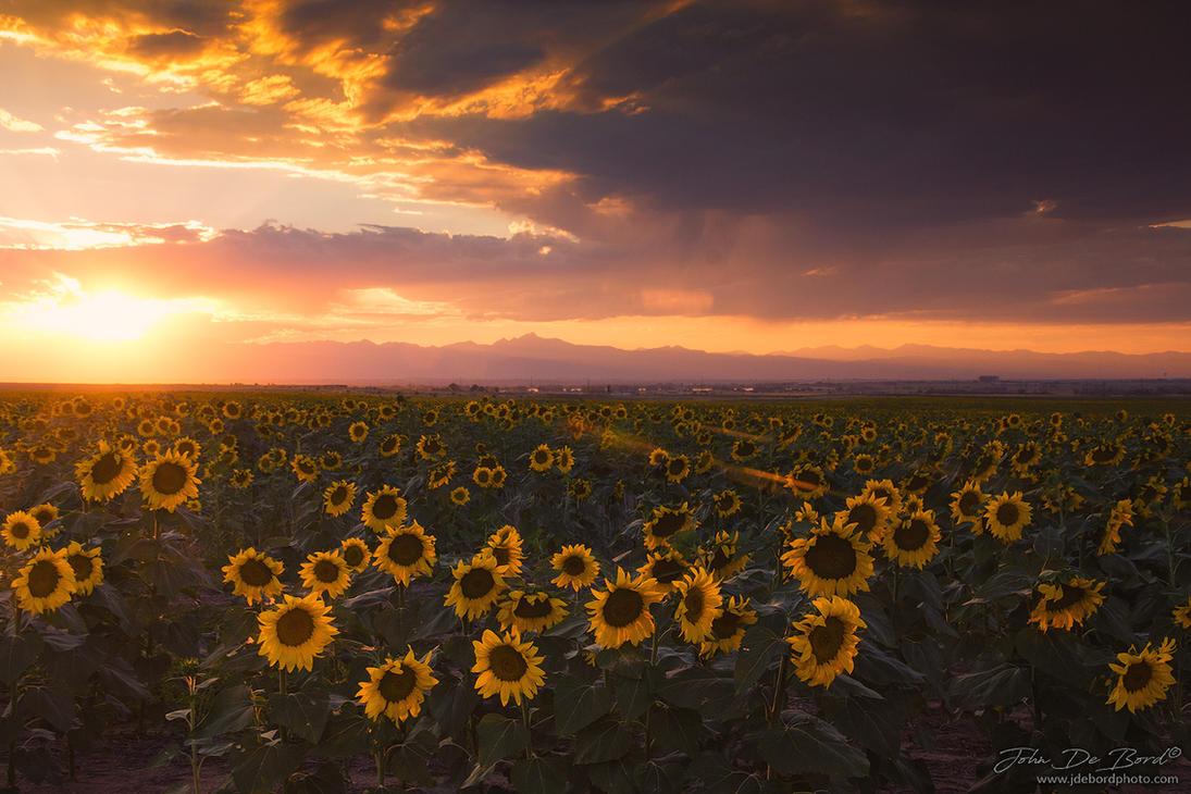 Sunset Of Summer by kkart