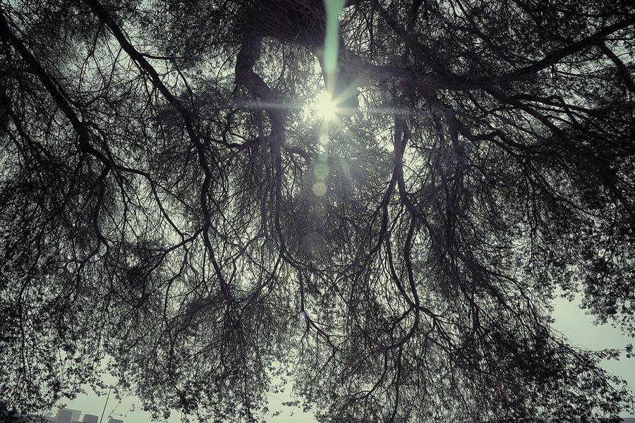 Bright light by Noora7at
