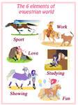 Equestrian elements