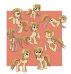 Pony Dolly attitude