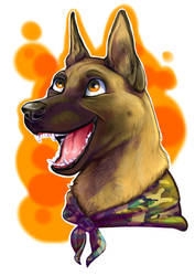Happy Malinois head by Adlynh