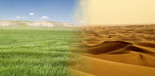 Grassland into Desert