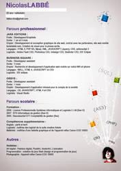 Curriculum vitae by MixedMilkChOcOlate