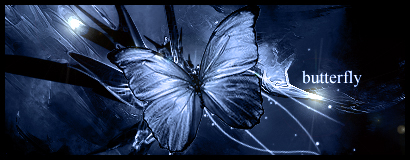 butterfly by piranha-design