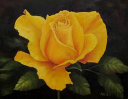 Richard's Rose by artofmaxielee