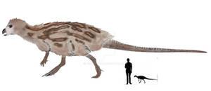 Hypsilophodon foxii reconstruction