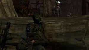 Fallen Stalkers