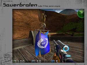 sauer flag