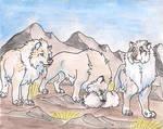 Hunting   my tokos, Brunhild, Tuffkan and Boxdaut