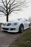 Mercedes SLK 2008 - W 1