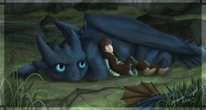 How to train your Dragon by Amand4