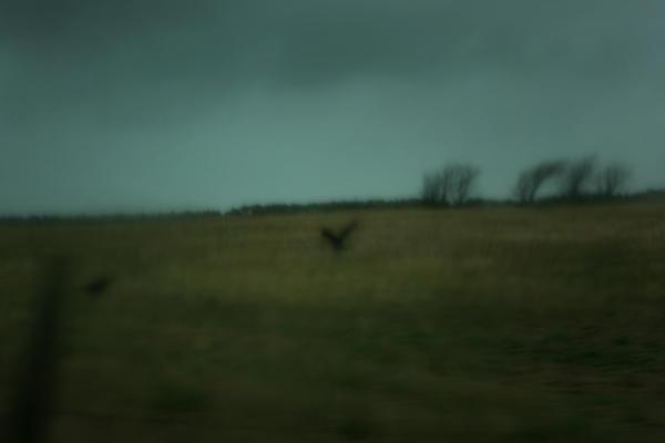 Gloomy day I by Besaid