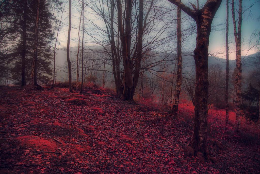 Gamlehaugen I by Besaid