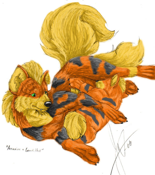 Colored Arcanine And Growlithe by wereblood