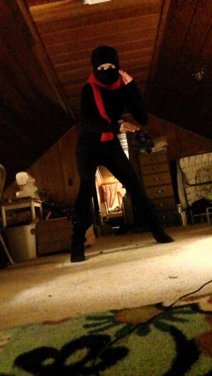 Ninja fighting stance