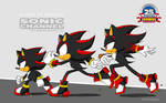 [Shadow The Hedgehog] Sonic Channel Style