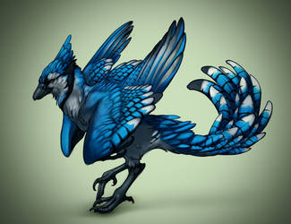 Blue Jay Raptor by cweinmanart
