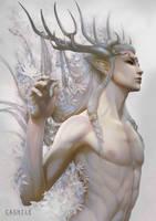 C - Pearlescent White