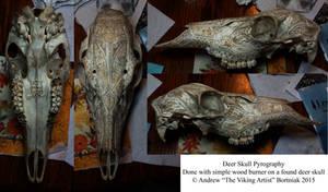 Deer Skull Pyrography