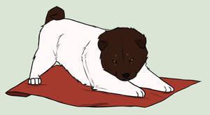 .: Fuzzy Wuzzy Doge :. by TreckyQueen