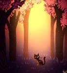 Black Cat + Forest