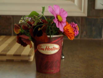 Cape Breton Flower Pot by dejacoup