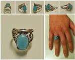 Max's ring