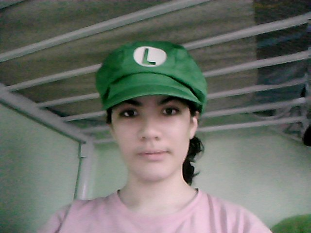 Luigi Hat XD by MariobrosYaoiFan12