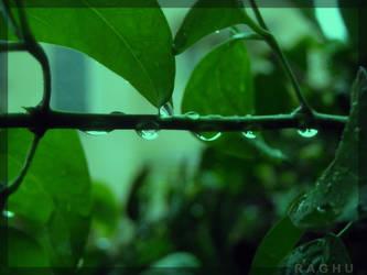dew 2 by raghunandan