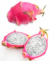 Dragon Fruit by TerrorCookie