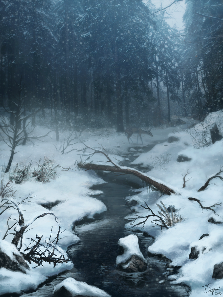 Winter by riikozor