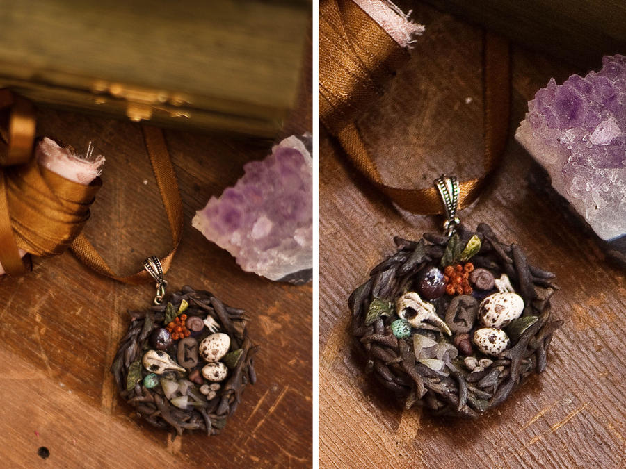 Witches nest. by AmberVixen