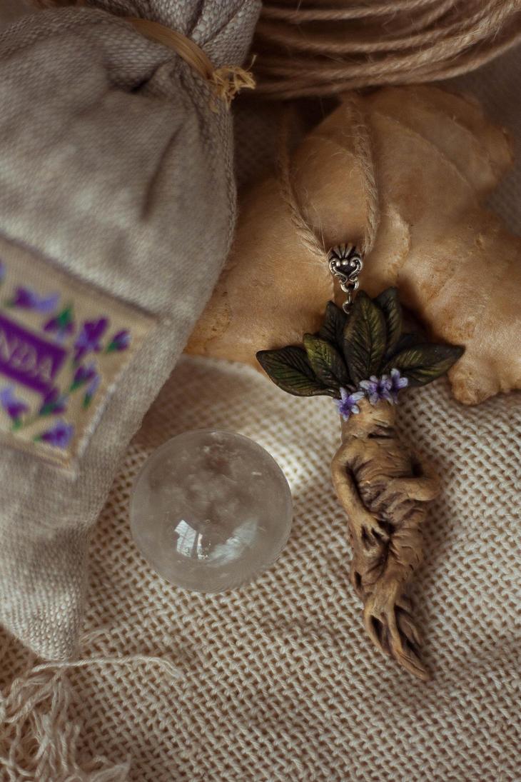 Mandrake root. by AmberVixen