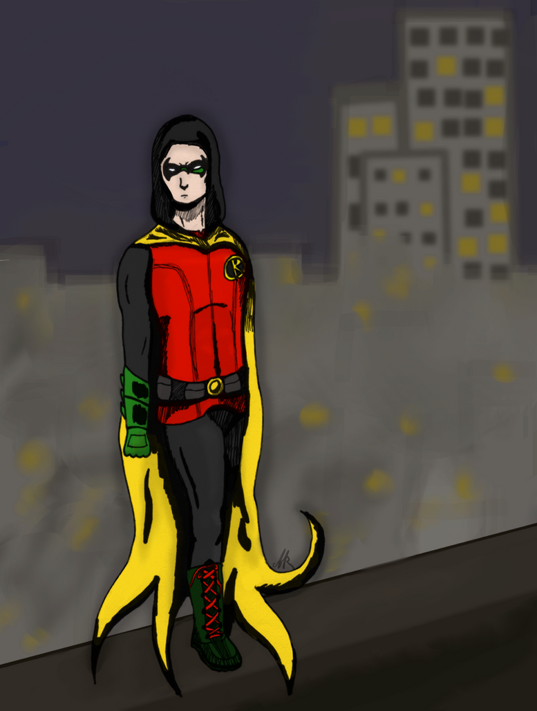 Robin by blackstormwarrior